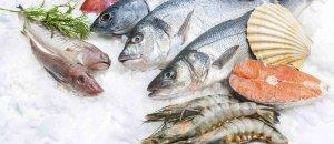 Конференция «Рыба-2017» стала отличной площадкой для налаживания контактов