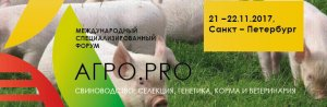 По производству свинины лидирует Псковская область