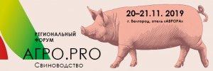 Сибирская Аграрная Группа на треть увеличит производство свинины