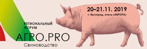 Цены на свинину в России могут снизиться на 3-5 % в 2020 году