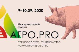 В Кудряшовский свинокомплекс инвестируют еще 2 млрд рублей