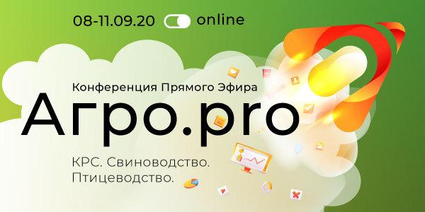 баннер-600_300