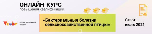 vcube_novikova_620_140